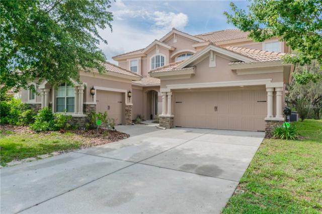 11748 Manistique Way, New Port Richey, FL 34654 (MLS #W7801353) :: The Duncan Duo Team