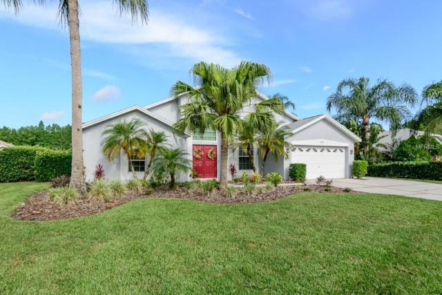1401 Kinsmere Drive, Trinity, FL 34655 (MLS #W7801355) :: Delgado Home Team at Keller Williams