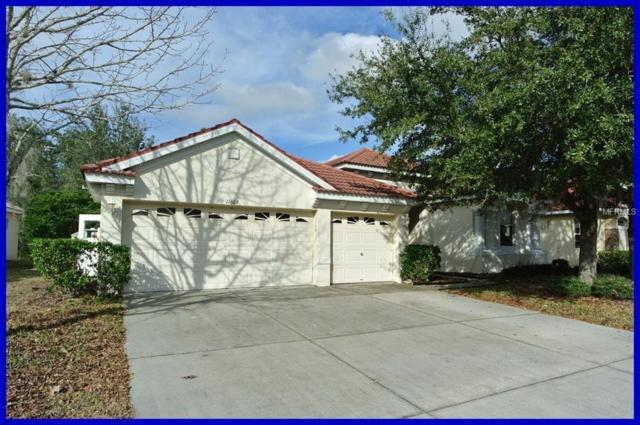 11609 Belle Haven Drive, New Port Richey, FL 34654 (MLS #W7801376) :: RE/MAX CHAMPIONS