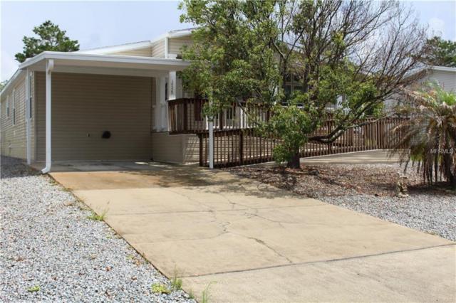 14529 Rialto Avenue, Brooksville, FL 34613 (MLS #W7801377) :: Griffin Group