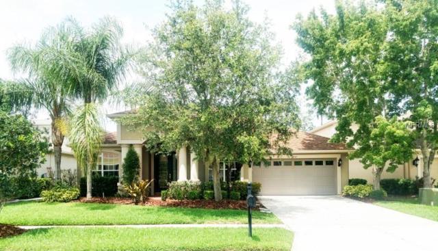 27145 Firebush Drive, Wesley Chapel, FL 33544 (MLS #W7801427) :: Arruda Family Real Estate Team