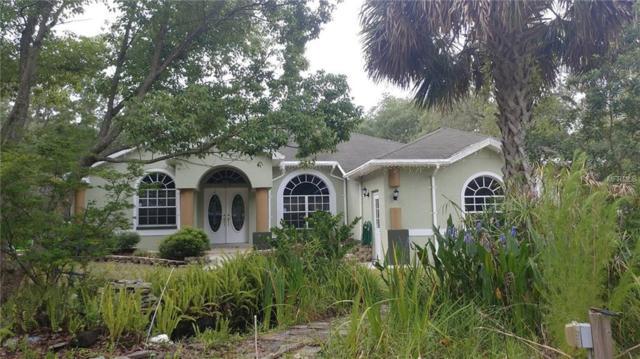 17954 Branch Road, Hudson, FL 34667 (MLS #W7801469) :: The Duncan Duo Team