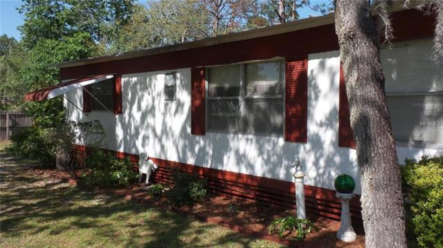 8028 Indian Trail Road, Weeki Wachee, FL 34613 (MLS #W7801542) :: The Duncan Duo Team