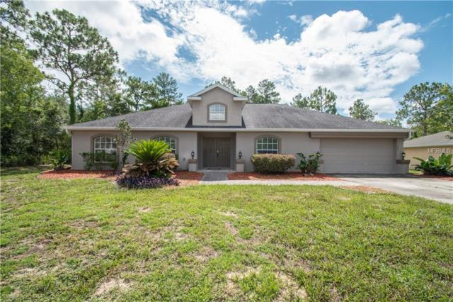 11024 Grass Finch Road, Weeki Wachee, FL 34613 (MLS #W7801679) :: The Price Group