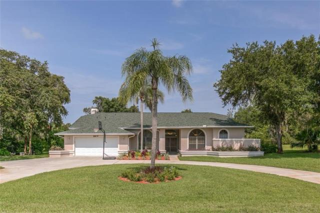 8809 Skymaster Drive, New Port Richey, FL 34654 (MLS #W7801893) :: Mark and Joni Coulter | Better Homes and Gardens