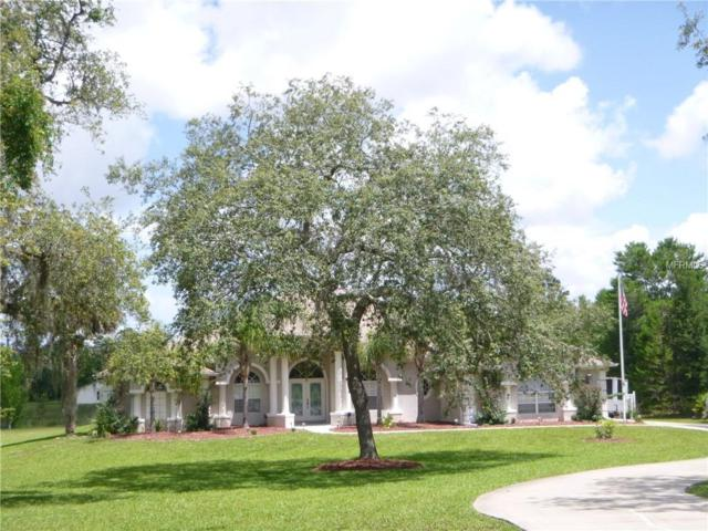 10237 Noddy Tern Road, Weeki Wachee, FL 34613 (MLS #W7802016) :: The Price Group