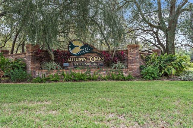 Lot 222 Feltner, Hudson, FL 34667 (MLS #W7802119) :: Mark and Joni Coulter | Better Homes and Gardens