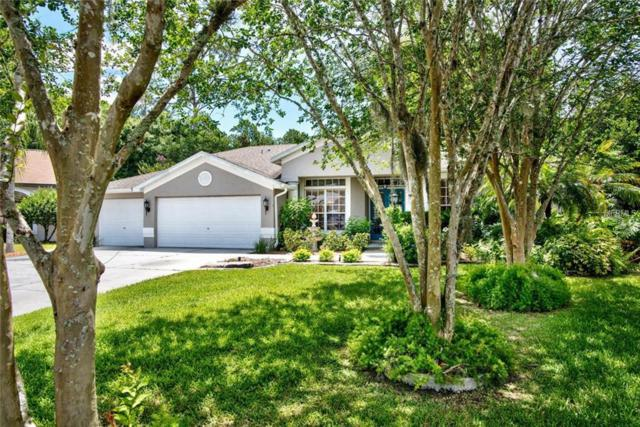 7960 Roundelay Drive, New Port Richey, FL 34654 (MLS #W7802164) :: Team Bohannon Keller Williams, Tampa Properties