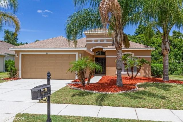 9625 Marblehead Lane, New Port Richey, FL 34654 (MLS #W7802239) :: Griffin Group