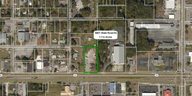 5801 State Road 54, New Port Richey, FL 34652 (MLS #W7802268) :: The Lockhart Team