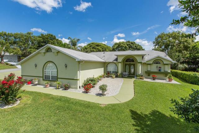 2334 Gimlet Avenue, Spring Hill, FL 34608 (MLS #W7802559) :: FL 360 Realty