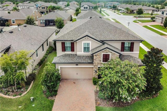 1672 Feather Grass Loop, Lutz, FL 33558 (MLS #W7802629) :: The Duncan Duo Team