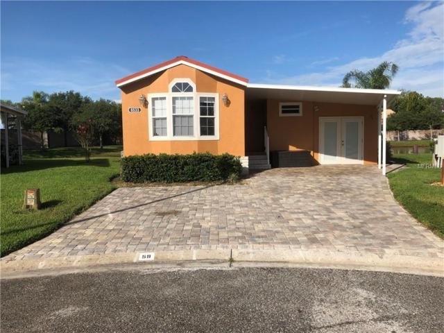 6533 La Mesa Road, Land O Lakes, FL 34637 (MLS #W7802844) :: Mark and Joni Coulter   Better Homes and Gardens