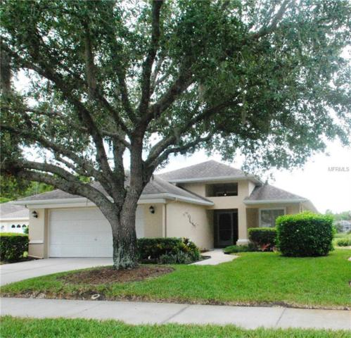 7838 Tenby Court, Trinity, FL 34655 (MLS #W7802895) :: Delgado Home Team at Keller Williams
