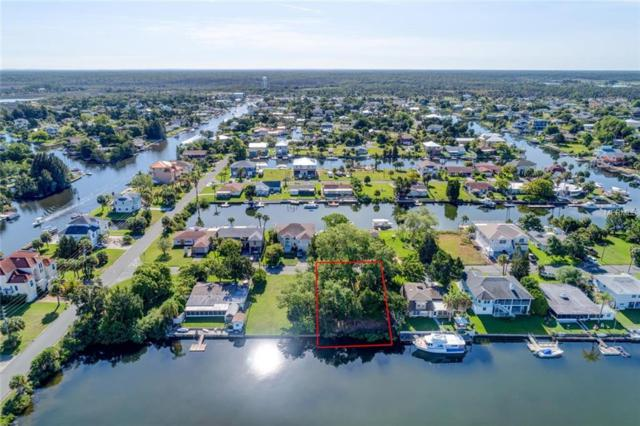 "4489 ""Lot 4"" Burmuda Drive, Hernando Beach, FL 34607 (MLS #W7802964) :: Mark and Joni Coulter 