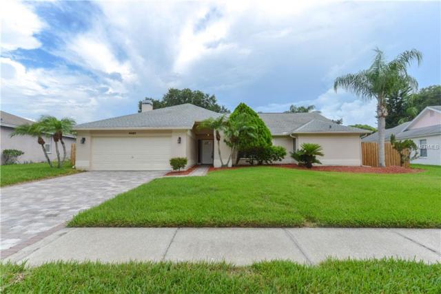 4461 Worthington Circle, Palm Harbor, FL 34685 (MLS #W7803033) :: Delgado Home Team at Keller Williams