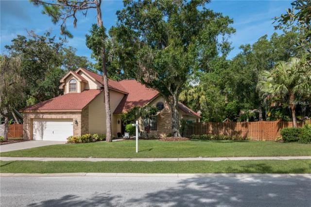 418 Cascade Lane, Palm Harbor, FL 34684 (MLS #W7803067) :: O'Connor Homes