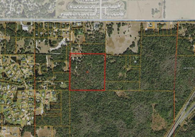 Amanda Park Drive, Lutz, FL 33559 (MLS #W7803085) :: Griffin Group