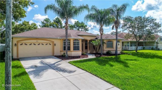 2046 Gold Road, Spring Hill, FL 34609 (MLS #W7803104) :: Dalton Wade Real Estate Group