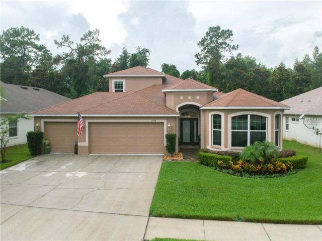 15718 Cedar Elm Terrace, Land O Lakes, FL 34638 (MLS #W7803117) :: KELLER WILLIAMS CLASSIC VI