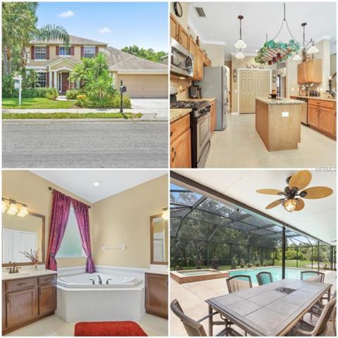 2817 Brinley Drive, Trinity, FL 34655 (MLS #W7803143) :: Jeff Borham & Associates at Keller Williams Realty