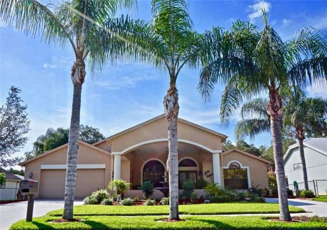4632 Anaconda Drive, New Port Richey, FL 34655 (MLS #W7803220) :: Jeff Borham & Associates at Keller Williams Realty