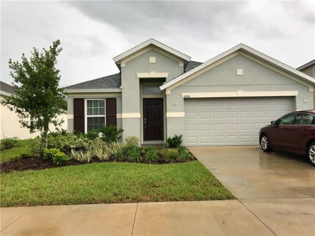 14204 Finsbury Drive, Spring Hill, FL 34609 (MLS #W7803224) :: Team Virgadamo