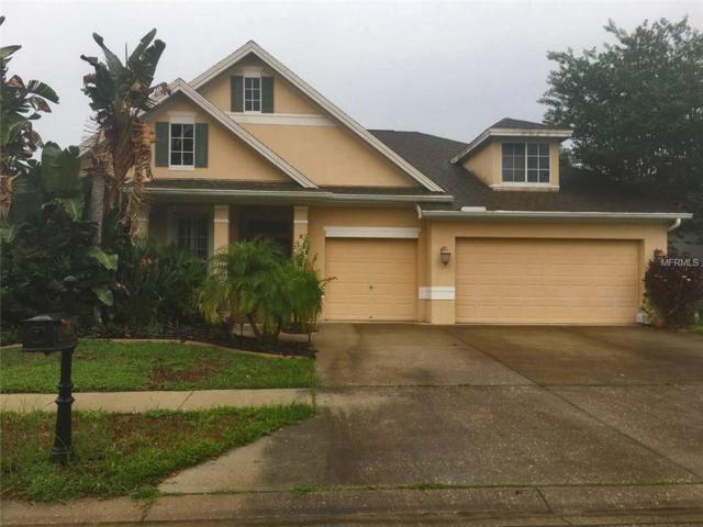 2919 Northfield Drive, Tarpon Springs, FL 34688 (MLS #W7803235) :: Team Virgadamo