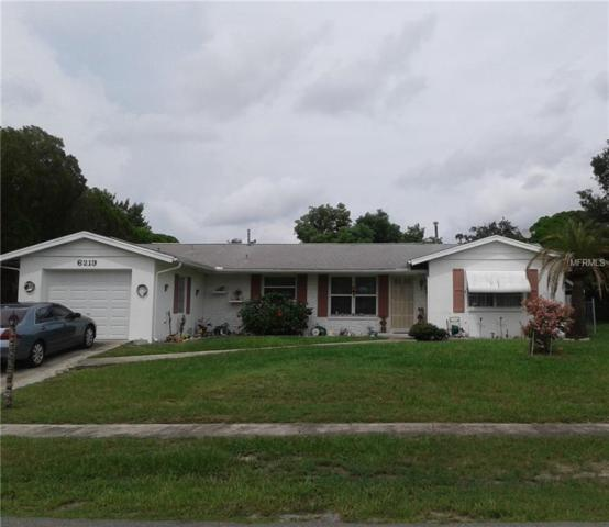 6219 Kelvin Court, Spring Hill, FL 34606 (MLS #W7803266) :: FL 360 Realty
