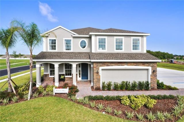 12218 Blue Pacific Drive, Riverview, FL 33579 (MLS #W7803297) :: The Duncan Duo Team
