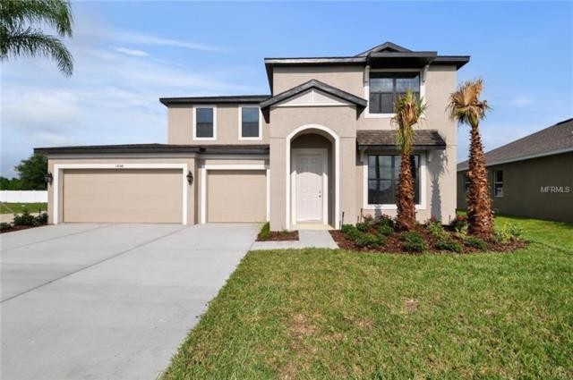 12220 Blue Pacific Drive, Riverview, FL 33579 (MLS #W7803299) :: The Duncan Duo Team