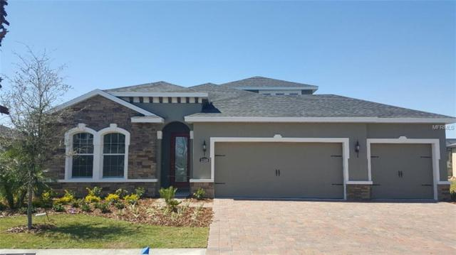 11540 Lake Lucaya Drive, Riverview, FL 33579 (MLS #W7803315) :: The Duncan Duo Team