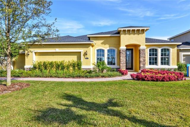 11546 Lake Lucaya Drive, Riverview, FL 33579 (MLS #W7803319) :: The Duncan Duo Team