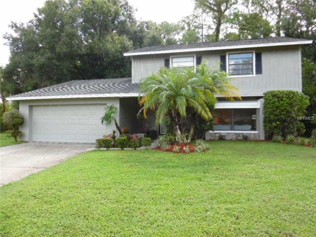 300 Waterford Circle W, Tarpon Springs, FL 34688 (MLS #W7803384) :: The Light Team