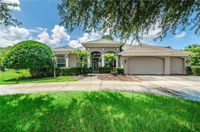 1105 Riverside Ridge Road, Tarpon Springs, FL 34688 (MLS #W7803394) :: The Light Team