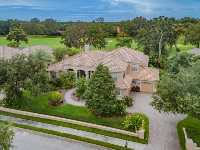 1213 Toscano Drive, Trinity, FL 34655 (MLS #W7803415) :: The Duncan Duo Team
