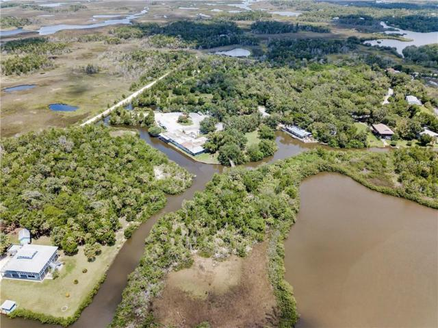 1650 S Fishcreek, Crystal River, FL 34429 (MLS #W7803465) :: Mark and Joni Coulter | Better Homes and Gardens