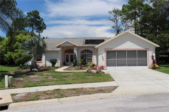 9031 Irondale Lane, Hudson, FL 34667 (MLS #W7803483) :: KELLER WILLIAMS CLASSIC VI