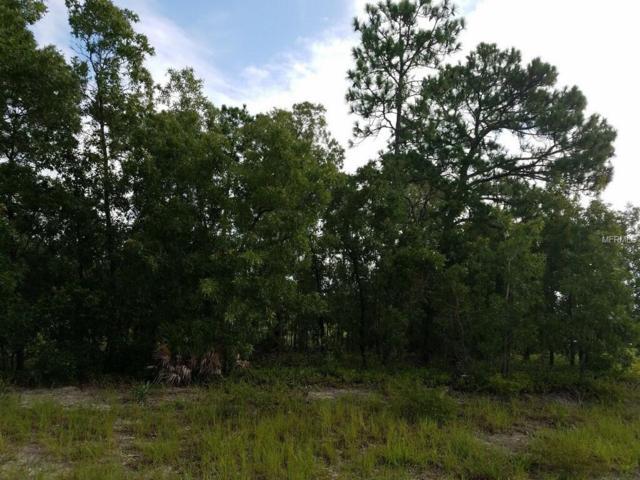 Lot 16 SE Pantera Loop, Weeki Wachee, FL 34613 (MLS #W7803546) :: Baird Realty Group