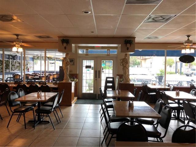 NEAR FAMOUS SPONGE D N Pinellas Avenue, Tarpon Springs, FL 34689 (MLS #W7803564) :: The Heidi Schrock Team