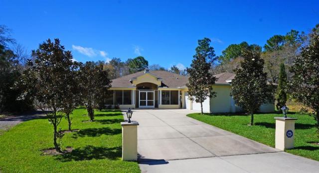 12105 Harris Hawk Road, Weeki Wachee, FL 34614 (MLS #W7803587) :: Premium Properties Real Estate Services
