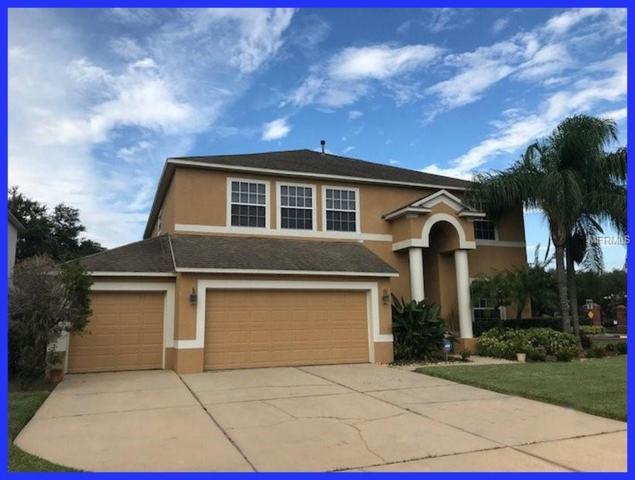 27335 Fordham Drive, Wesley Chapel, FL 33544 (MLS #W7803676) :: Team Bohannon Keller Williams, Tampa Properties