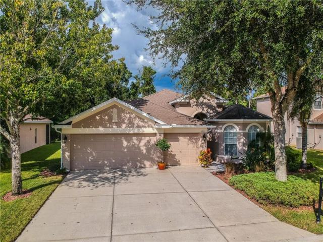11323 Oyster Bay Circle, New Port Richey, FL 34654 (MLS #W7803785) :: The Duncan Duo Team