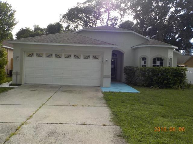 Address Not Published, New Port Richey, FL 34652 (MLS #W7803818) :: The Duncan Duo Team