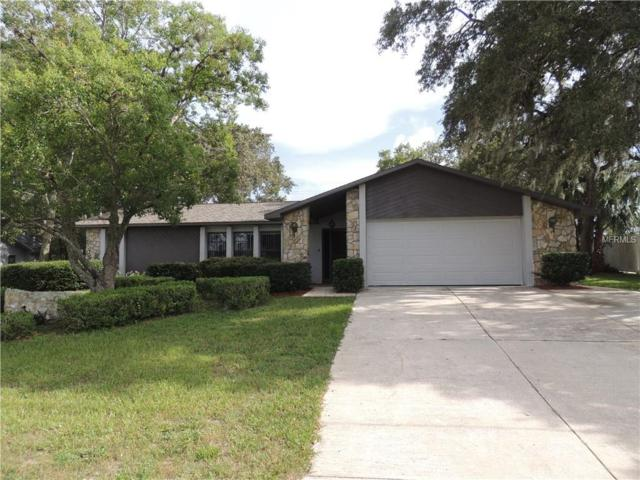 5066 Caldwell Street, Spring Hill, FL 34606 (MLS #W7803886) :: Premium Properties Real Estate Services