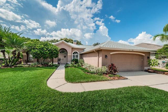 8841 Bel Meadow Way, Trinity, FL 34655 (MLS #W7803909) :: RE/MAX CHAMPIONS