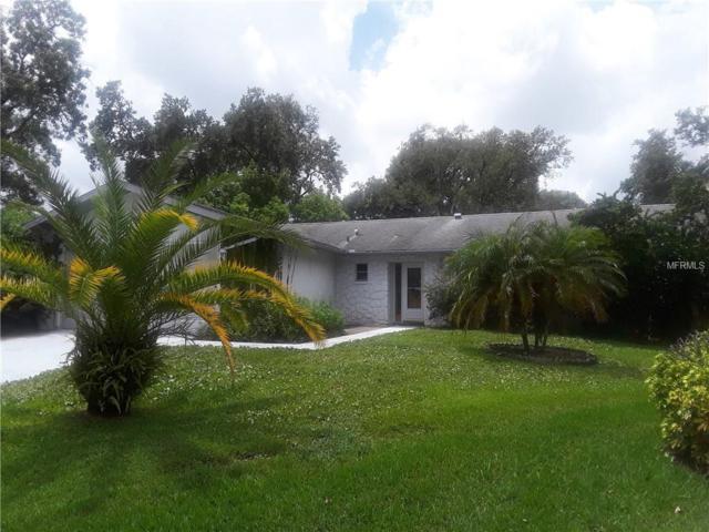 10535 Hardwood Court, Port Richey, FL 34668 (MLS #W7803913) :: RealTeam Realty