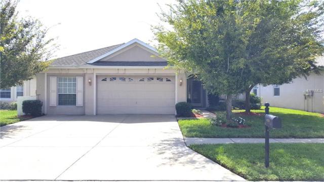 14250 Beauly Circle, Hudson, FL 34667 (MLS #W7803917) :: Premium Properties Real Estate Services