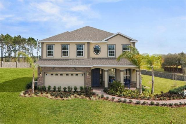 304 Whirlaway Drive, Davenport, FL 33837 (MLS #W7804001) :: The Light Team