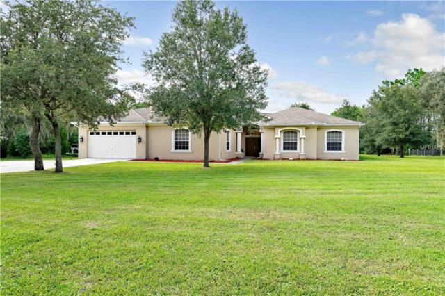 13133 Whitmarsh Street, Spring Hill, FL 34609 (MLS #W7804003) :: Mark and Joni Coulter | Better Homes and Gardens